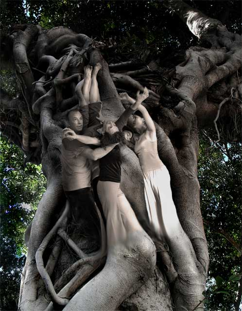 CI Tree Spirits Contact Improvisation Art and photography ...
